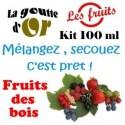 FRUITS DES BOIS - KITS 100 ML