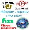 FIZZ CITRON GINGEMBRE - KITS 50 ML
