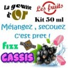 FIZZ CASSIS - KITS 50 ML