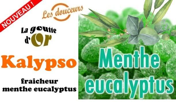 Kalypso e-liquide pas chère goût menthe eucalyptus Cig-Discount