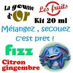 FIZZ CITRON GINGEMBRE - KITS 20 ML