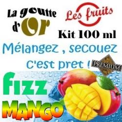 FIZZ MANGO - KITS 100 ML